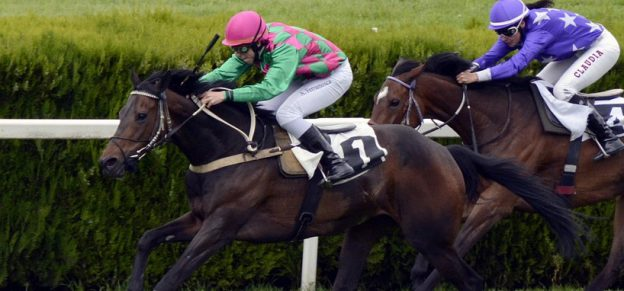 Best horse racing betting sites revealed